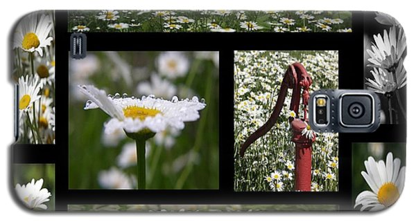 My Daisy Galaxy S5 Case by Yumi Johnson