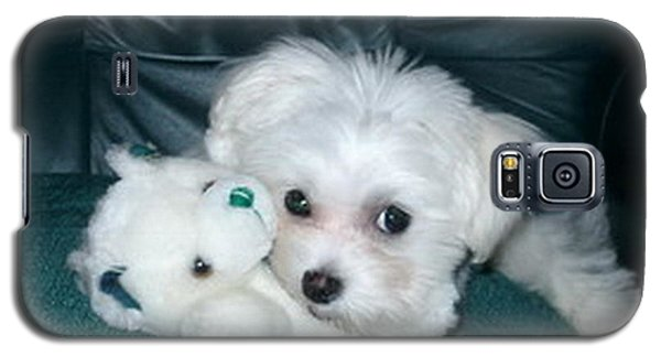 Galaxy S5 Case featuring the photograph My Dog Maggie by Joyce Gebauer