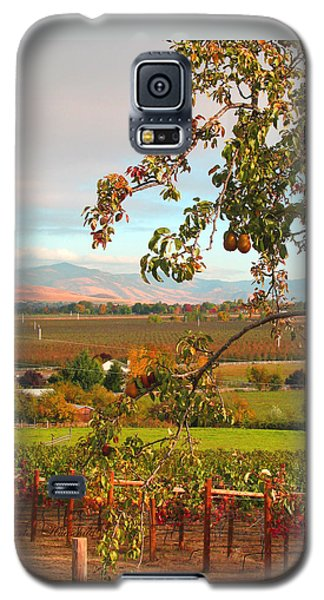 My Favorite Valley View - Autumn In Southern Oregon Galaxy S5 Case