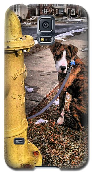 Galaxy S5 Case featuring the photograph My Friend Plug by Robert McCubbin