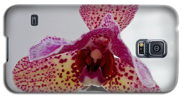 Galaxy S5 Case featuring the photograph My Little Alien by Ramona Matei