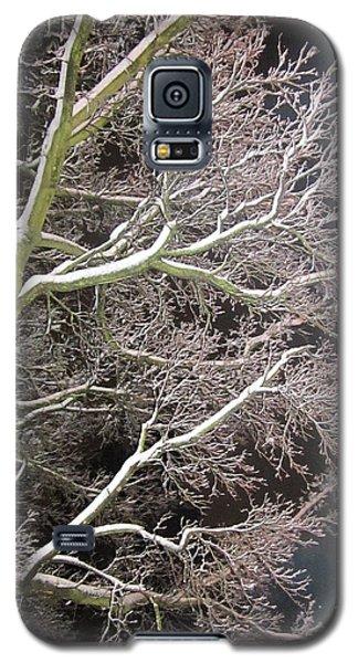 My Magic Tree Galaxy S5 Case