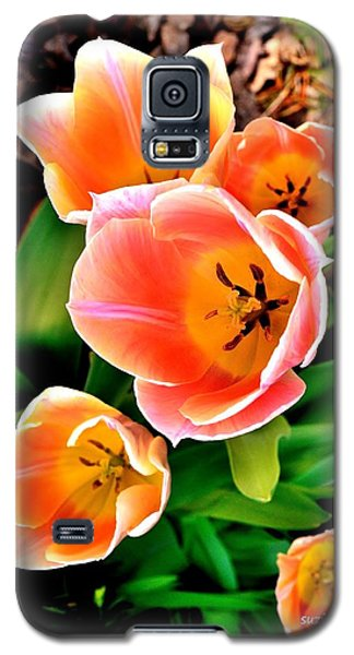 My Mom's Tulips Galaxy S5 Case