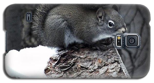 My Own Fur Wrap Galaxy S5 Case