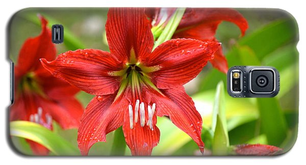 Galaxy S5 Case featuring the photograph My Red Daylily...after The Rain by Lehua Pekelo-Stearns