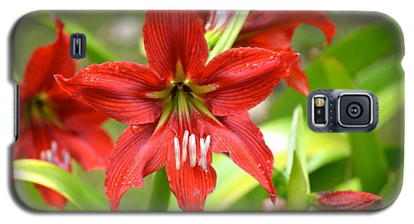 My Red Daylily...after The Rain Galaxy S5 Case by Lehua Pekelo-Stearns