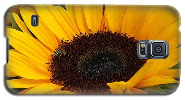 My Sunshine Galaxy S5 Case