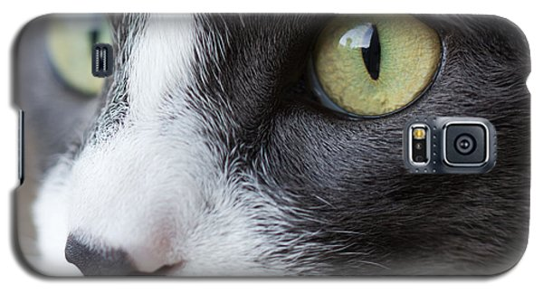 Galaxy S5 Case featuring the photograph My Sweet Boy by Heidi Smith