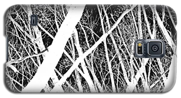 Mystic Forest Galaxy S5 Case by Steven Milner