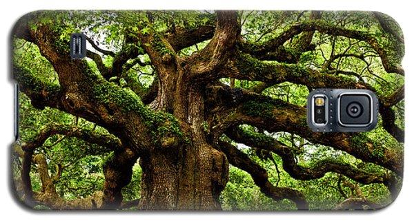 Mystical Angel Oak Tree Galaxy S5 Case