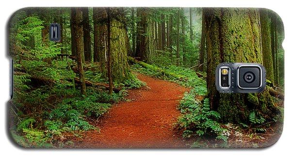 Mystical Trail Galaxy S5 Case
