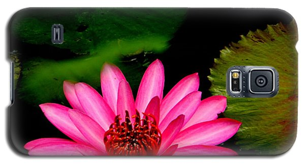 Galaxy S5 Case featuring the photograph Mystical Water Lilly by Jodi Terracina