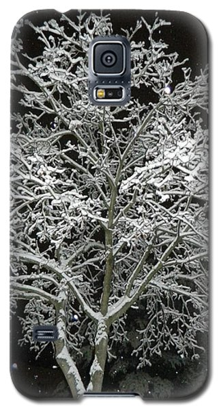 Mystical Winter Beauty Galaxy S5 Case by Emmy Marie Vickers