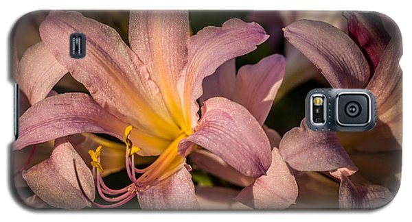 Galaxy S5 Case featuring the photograph Naked Ladies And The Green Bug by Wayne Meyer