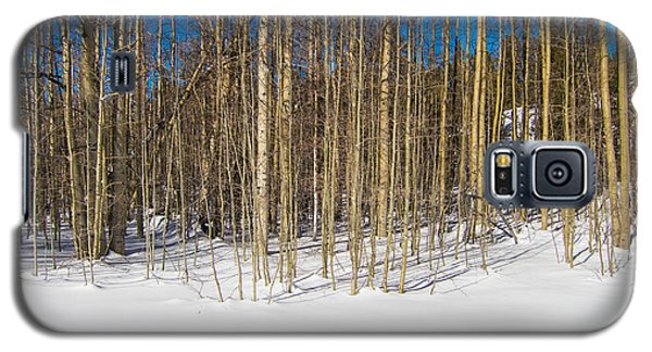 Galaxy S5 Case featuring the photograph Naked Wilderness by Mike Lee