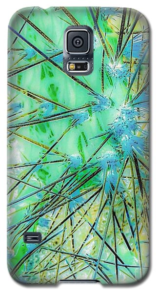 Galaxy S5 Case featuring the photograph Nambe Cactus by William Wyckoff