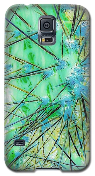 Nambe Cactus Galaxy S5 Case by William Wyckoff