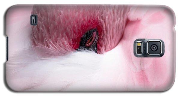 Nap Time Galaxy S5 Case by Lisa L Silva