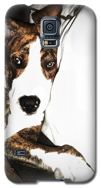 Galaxy S5 Case featuring the photograph Nap Time by Robert McCubbin