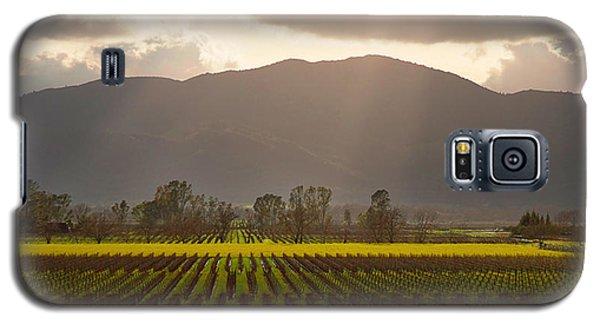 Napa Beauty Galaxy S5 Case