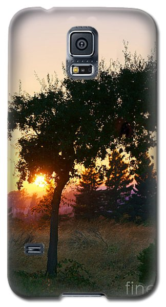 Galaxy S5 Case featuring the photograph Napa Moment by Ellen Cotton