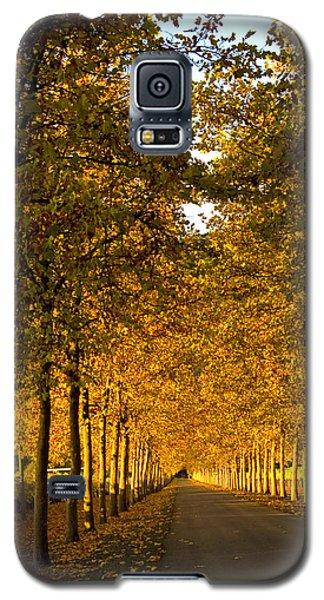 Napa Valley Fall Galaxy S5 Case