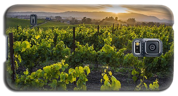 Napa Valley Sunset  Galaxy S5 Case