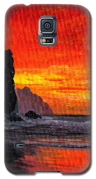 Napali  Galaxy S5 Case