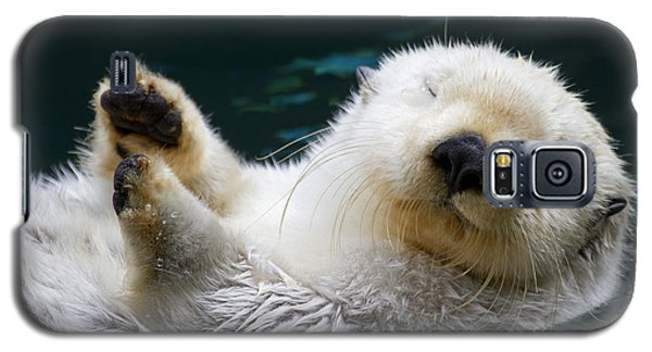 Otter Galaxy S5 Case - Napping On The Water by Mike  Dawson