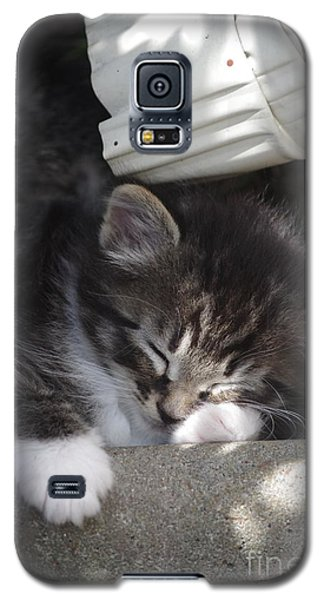 Galaxy S5 Case featuring the photograph Naptime Kitty by Tannis  Baldwin