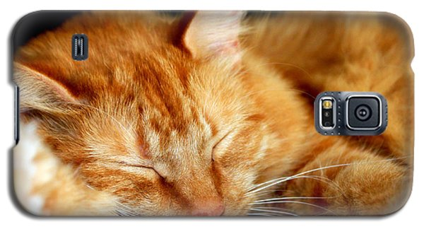 Naptime Galaxy S5 Case