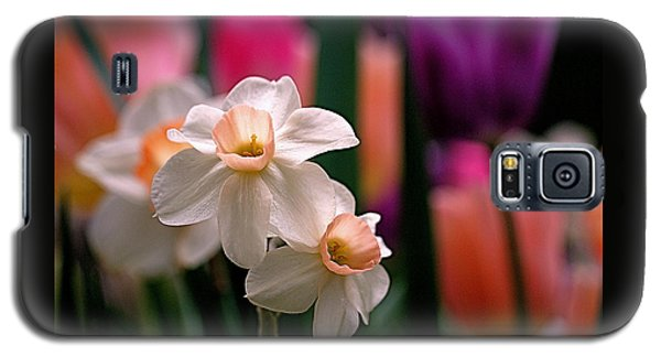 Narcissus And Tulips Galaxy S5 Case by Rona Black