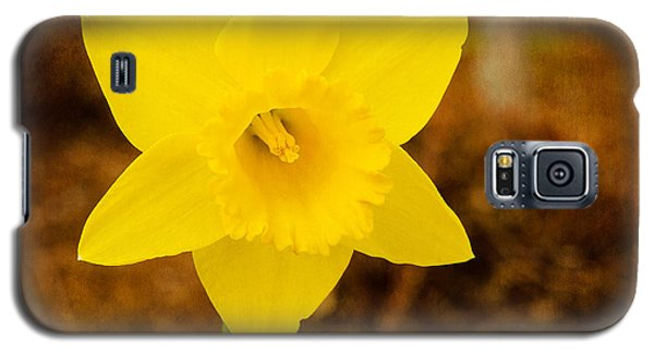 Narcissus At Attention Galaxy S5 Case by MaryJane Armstrong