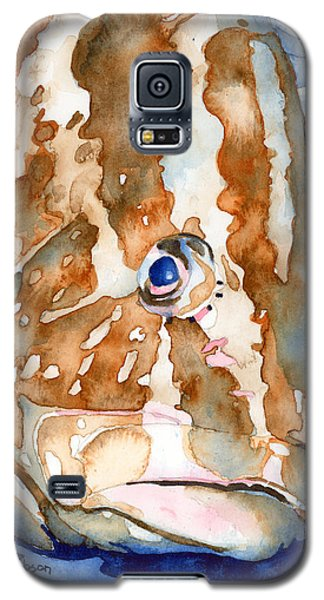 Nassau Grouper Portrait Galaxy S5 Case