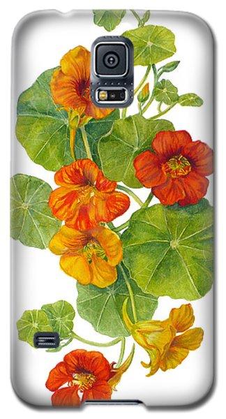 Nasturtiums - Tropaeolum Majus  Galaxy S5 Case