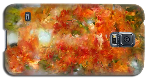 Natural Abstractions #12 The Orange Tree Galaxy S5 Case