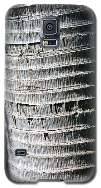 Galaxy S5 Case featuring the photograph Natural Art by Karen Nicholson