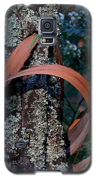 Galaxy S5 Case featuring the photograph Natural Bands 1 by Evelyn Tambour