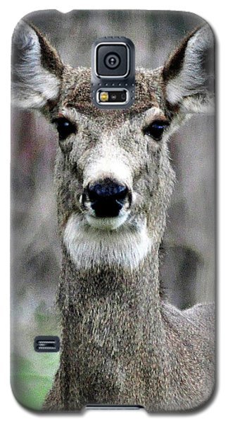 Galaxy S5 Case featuring the photograph Natural Beauty by Juls Adams