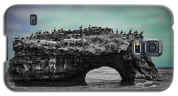 Natural Bridges State Beach Galaxy S5 Case