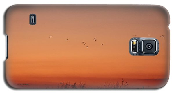 Galaxy S5 Case featuring the photograph Natural Colors by Rogerio Mariani