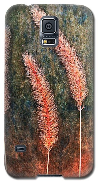 Galaxy S5 Case featuring the digital art Nature Abstract 15 by Maria Huntley
