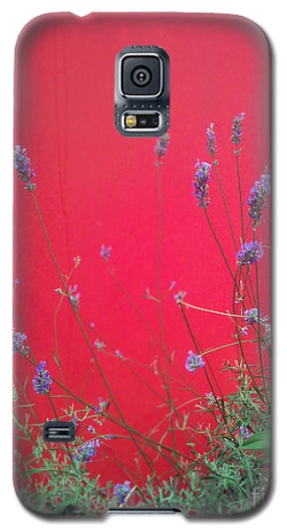 Nature And The City Galaxy S5 Case