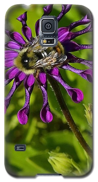 Nature At Work Galaxy S5 Case