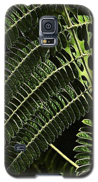Nature Lines Galaxy S5 Case