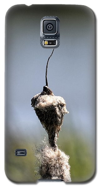 Galaxy S5 Case featuring the photograph Nature Man? by Leif Sohlman