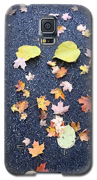 Nature Meets The Pavement Galaxy S5 Case