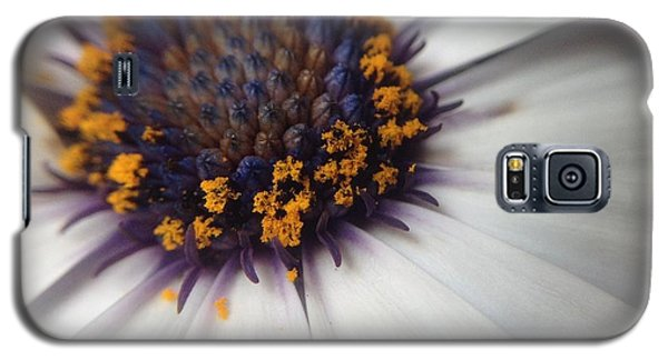 Galaxy S5 Case featuring the photograph Nature Photography 11 by Gabriella Weninger - David