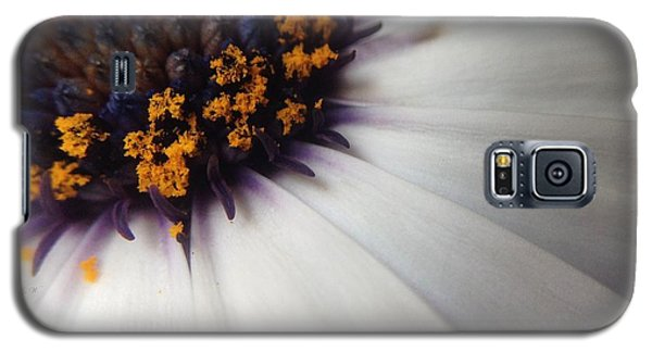 Galaxy S5 Case featuring the photograph Nature Photography 5 by Gabriella Weninger - David