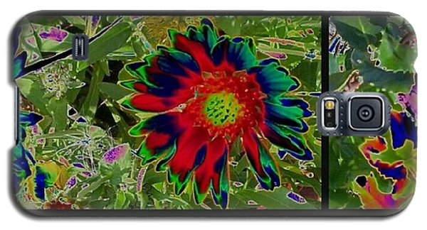 Galaxy S5 Case featuring the photograph Nature Reprise by Thomasina Durkay